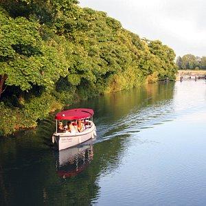 Golden Slumbers: Eco friendly zero emissions electric cruise boat