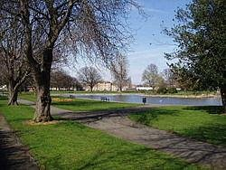 Herne Bay Park