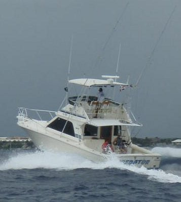 38ft Blackfin Predator running the Channel for Sportfishing Punta Cana Off Cap Cana at Mike's Ma