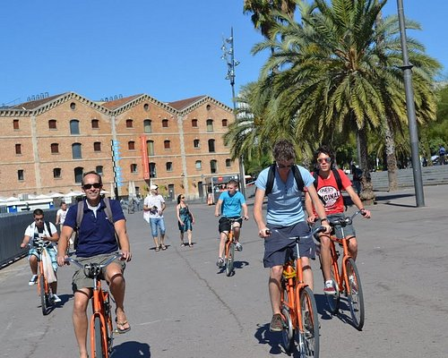 Group tours - See more by bike!