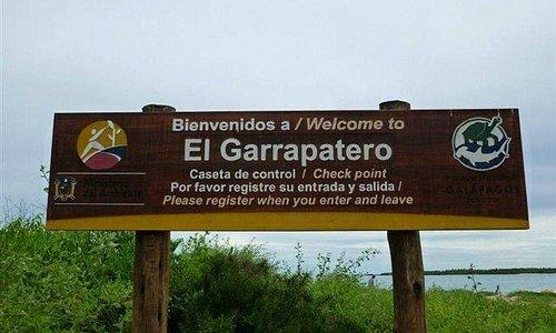 Garrapatero Beach