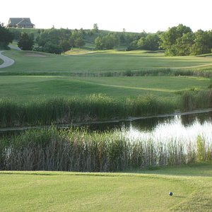 Chickasaw Pointe Colf Course - #9 tee