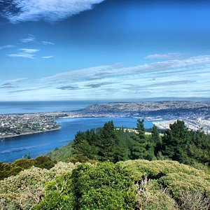 from the top of Signal Hill