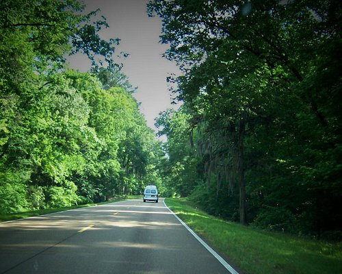 On the road to Natchez, MS