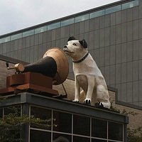 Nipper on Rooftop