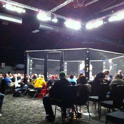 MMA at EQC