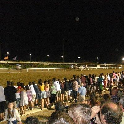 Racecourse 2
