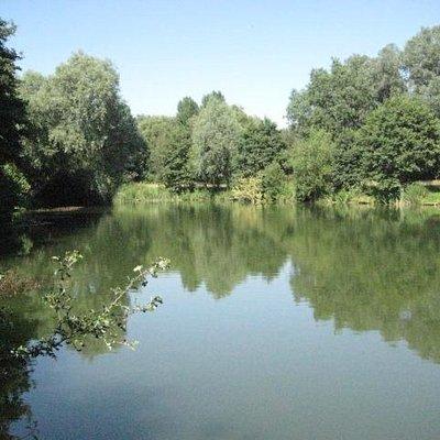 Artistic Lake!