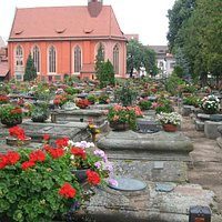 Amazing display of plants in pots at this cemetery