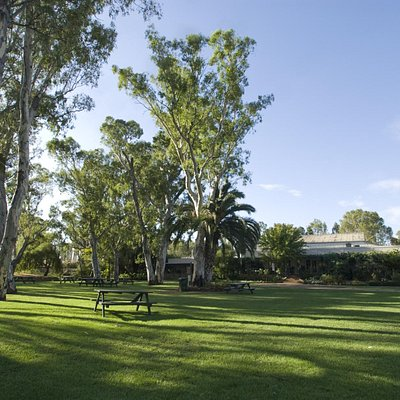 Peter Lehmann Wines Cellar Door Grounds