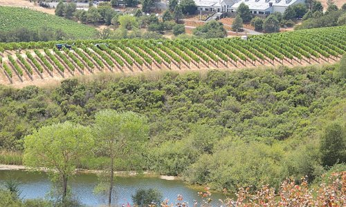 View of the tasting room from the highest point of the property.