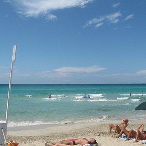 baia verde al confine tra spiaggia attrezzata e libera