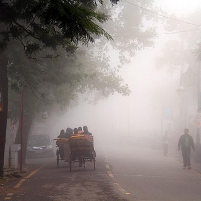 The misty surroundings