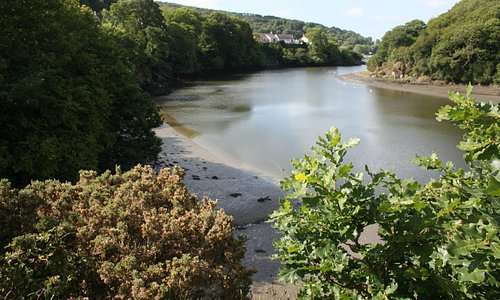 View from in front of Teifi Netpool