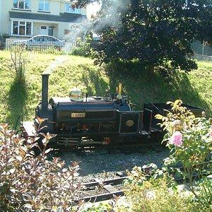 Lillian - loco in steam