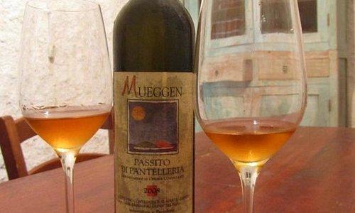 La cantina ed uno dei vini degustati.