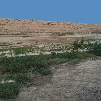 the wadi in summer