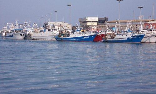 porto di anzio - imbarcazioni
