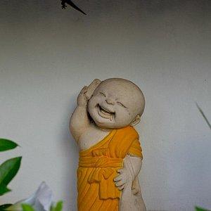Gecko at Wat Prathat doi Kam