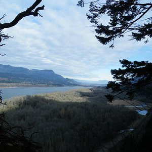 Viewpoint above Upper Horsetail (from prior hike Dec 10) - LLH