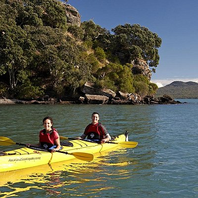 Sea Kayaking Tour with Auckland Sea Kayaks