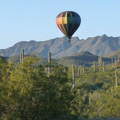 Tucson Mountains/Saguaro National Park W.