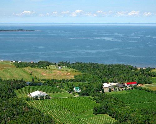 Aerial view of Jost Vineyards