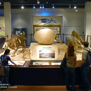 Hall of Geology and Paleontology