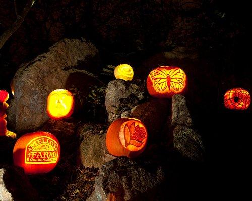 The Annual Ballard Park Pumpkin Tour happens every October
