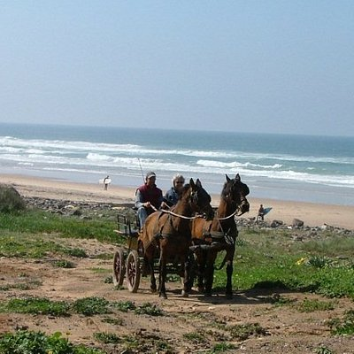 Carriage drive to the beach