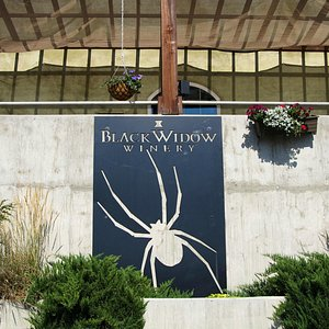 View of the Black Widow sign from the parking lot.