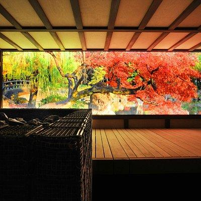 Japanese sauna