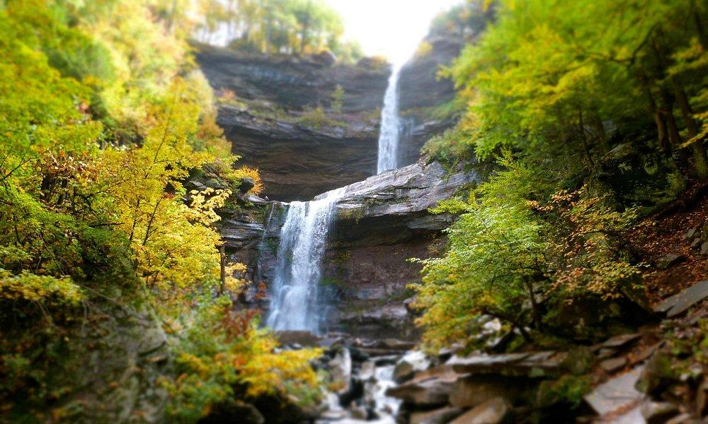 Gorgeous falls!