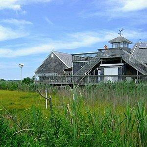 The Wetlands Institute