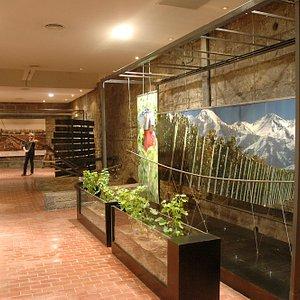 En esta galería hay fotos fantásticas de la historia del vino en Argentina