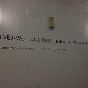 Ai WeiWei expo