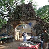 Temple Premisses