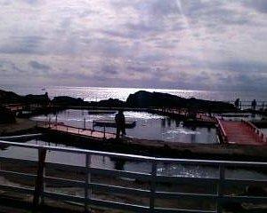 磯釣りセンター