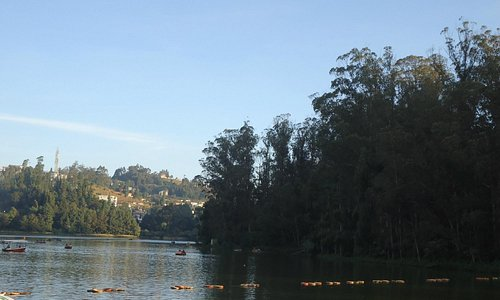 The Ooty lake