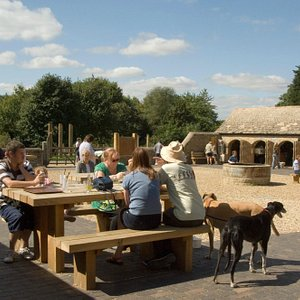 Top Lodge visitor centre courtyard