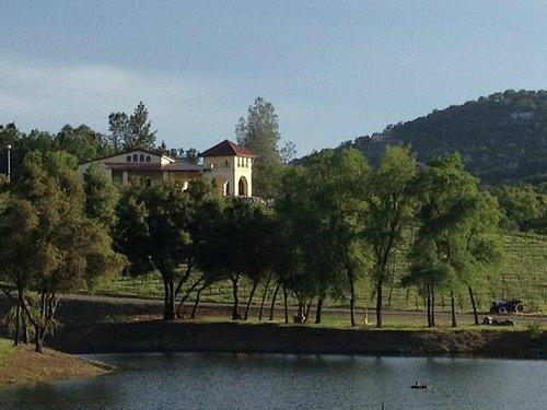 Viticulture Galleria and pond