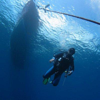 dive at nusa penida and lembongan bali