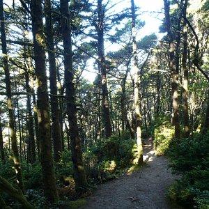 The Hobbit Trail