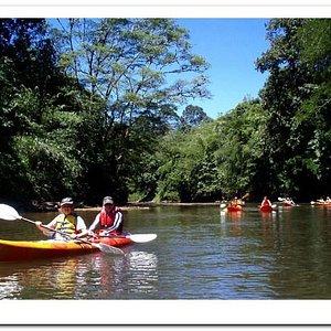 Kayaking in Borneo Highlands.