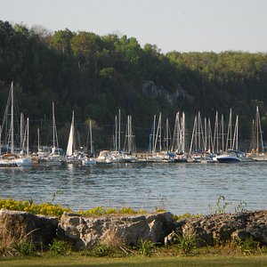 viewing the marina from the park.