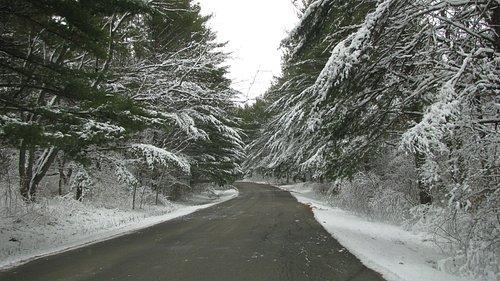 Winter at Rock Cut