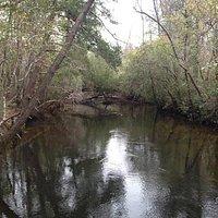 Pond Creek.