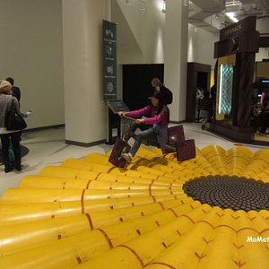 MoMath smooth ride on square wheels