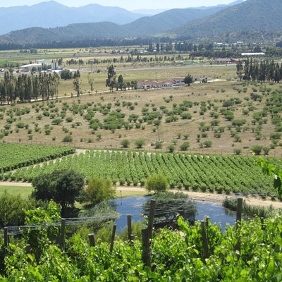 View from the terrace at Indomita Winery