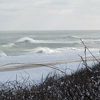Nauset Beach from the Bluff, w/ big north winds
